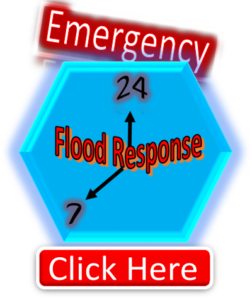 emergency-flood-button